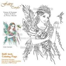 amy brown fairies coloring book amy brown amazon books