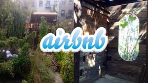 brooklyn man wants to airbnb his new treehouse animal