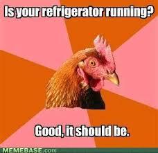 Chicken Meme Jokes - anti joke chicken meme funny pinterest meme dumb jokes and memes
