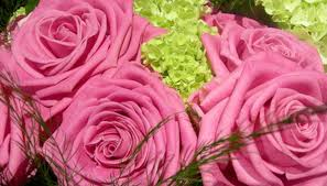 Valentines Day Flowers How To Sell Flowers For Valentine U0027s Day Bizfluent