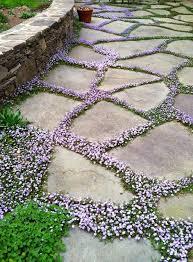 garden paths 32 natural and creative stone garden path ideas gardenoholic