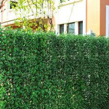 1 5sqm artificial boxwood hedges panels outdoor decorative