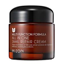 It Works Skin Care Reviews Amazon Com Mizon All In One Snail Repair Cream 75 Grams Beauty