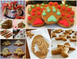 christmas dog dog treats and treats on pinterest