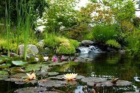 Botanical Gardens Seattle In The Park At Highline Seatac Botanical Garden Events
