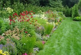small flower garden layout picturesque design perennial garden designs download garden