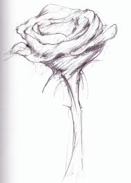 flower sketch free download clip art free clip art on