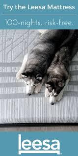 46 best leesa our mattress images on pinterest mattress foam