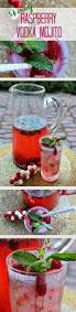 raspberry mojito recipe skinny raspberry vodka mojito