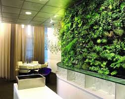 Interior Plant Wall 1447 Best Wall Gardening Images On Pinterest Vertical Gardens