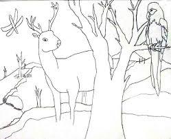 outline drawings of landscapes beatiful landscape
