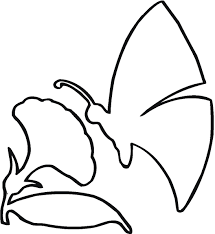 outline of butterfly for colouring kids coloring europe travel