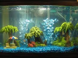 Decorative Water Tanks 10 Best Fishtank Decoration Images On Pinterest Fish Tanks