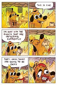 Know Your Meme Dog - this is fine this is fine know your meme