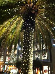 palm trees for christmas christmas lights decoration