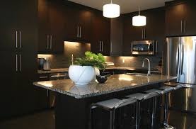Kitchen Cabinets Lighting 22 Beautiful Kitchen Colors With Dark Cabinets Home Design Lover
