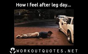 Gym Memes - gym memes how i feel after leg day workout quotes