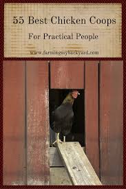 55 best chicken coops for practical people farming my backyard