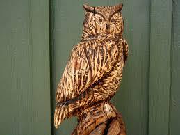 perched owls sleepy hollow