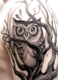 owl on tree half sleeve photos pictures and sketches