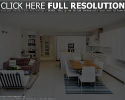 Design Open Concept Kitchen Living Room by Incredible Kitchen Living Room Design Ideas