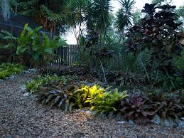 outdoor landscape lighting for florida landscapes with plants and