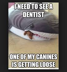Dentist Meme - 24 dentist memes that are seriously funny sayingimages com