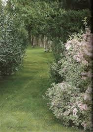 best 25 provence garden ideas on pinterest provance france