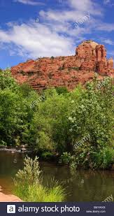 sedona arizona cathedral rock from red rock crossing with oak