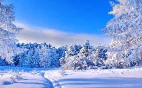 blue sky and white nature winter day