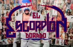 Challenge Escorpion Dorado Escorpión Dorado Que Ladra No Pica Metatube