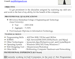 resume professional resume writing services online elegant best