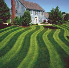 landscaping tips how to create striping patterns in your lawn for