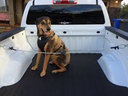 Truck Bed Flag Mount Safety Harness For Dog To Ride In Pickup Truck Bed 6 Steps With