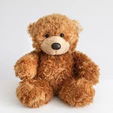 Meme Teddy Bear - funny sticker and meme location flowers teddy bears cuddly soft