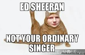 Ed Meme - ed sheeran not your ordinary singer make a meme