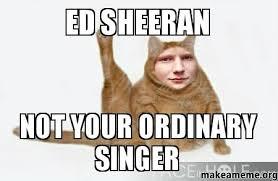 Ed Meme - ed sheeran not your ordinary singer make a meme