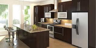 prefab kitchen cabinets the best prefab kitchen cabinets tedx designs