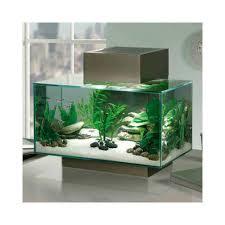 fluval edge aquarium 23 liters tiendanimal