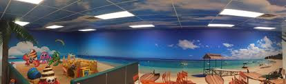 custom vinyl wall murals for frozen yogurt restaurant in mason beach paradise wall mural columbus ohio