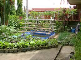 fresh container vegetable gardening arizona 6099