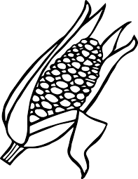 coloring pages corn for thanksgiving maze printable stalk of copia