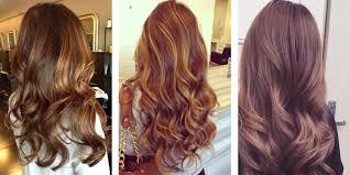 light golden brown hair color chart light golden brown hair 1258612 terrasource info