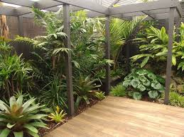 Small Backyard Landscaping Designs by Best 25 Bali Garden Ideas On Pinterest Balinese Garden