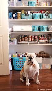 kitchen cabinet organization ideas kitchen pantry organization makeover free printable labels pantry
