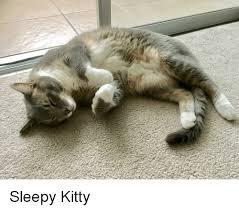 Sleepy Kitty Meme - sleepy kitty kitty meme on me me