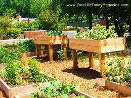 Raised Gardens Ideas Raised Garden Beds Design Ideas The Garden Inspirations