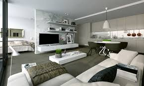 Wall Mount Tv In Apartment Interior Flawless Small Apartment Interior Ideas White Color