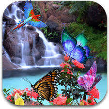 3d butterfly live wallpaper android apps on play