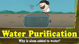 alum a lub water purification why is alum added to water